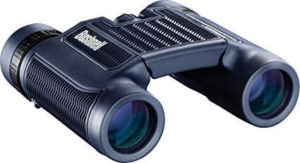 Bushnell H2O Waterproof-Fogproof Compact Roof Prism Binocular 10x25