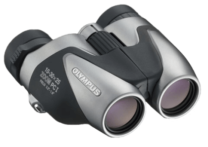 Olympus zoom 10-30x25