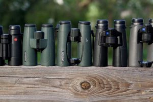 8 Things You Must Know Before Choosing Binoculars