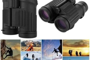 What's the Best Magnification for Binoculars?
