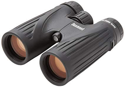 Bushnell Legend Ultra HD Roof Prism Binocular 10×42