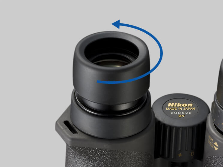 binocular-eyecups