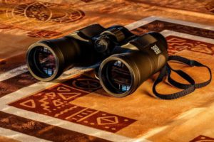 What Does Image Quality Mean in Binoculars?