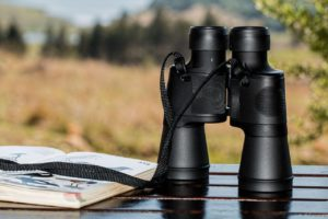 What are the Best Binoculars You Can Buy? 7 Tips for a Successful Buy