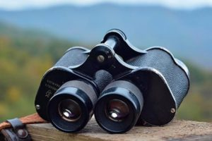 What Affects Image Stability in Binoculars