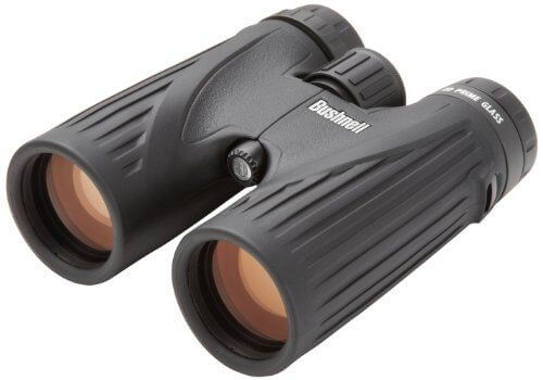 Bushnell Legend Ultra HD Roof Prism Binocular, 10x42