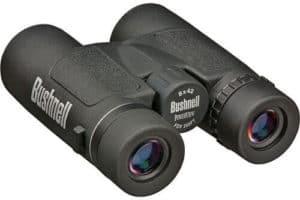 Are Bushnell Binoculars Worth the Money?