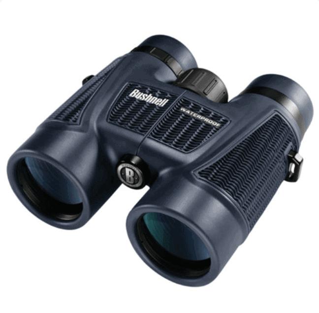 bushnell-cheap-class-binoculars