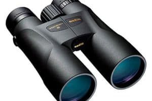 Are Nikon Binoculars Worth the Money?