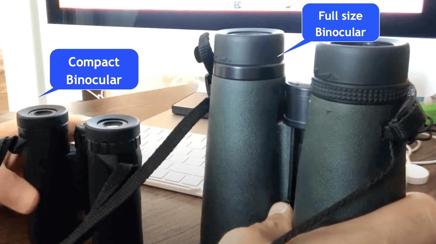 compact and full size binoculars
