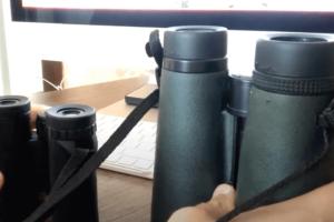 Compact vs Full Size Binoculars: Definitive Guide