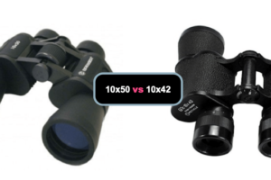 10×42 vs 10×50 Binoculars. Which is Best?