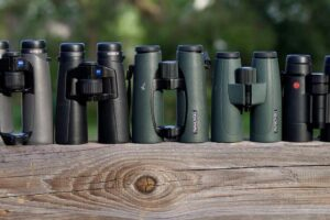 How to Choose a Binocular If You are on a Tight Budget